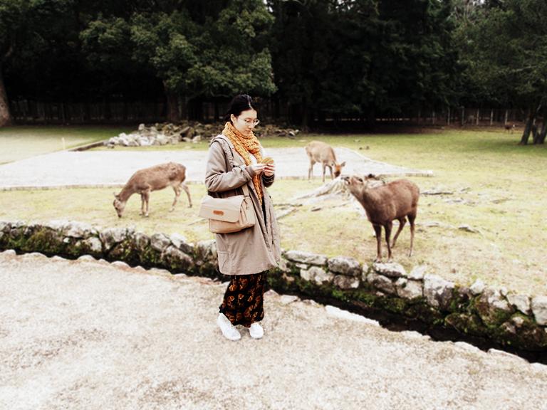 deer-me_2